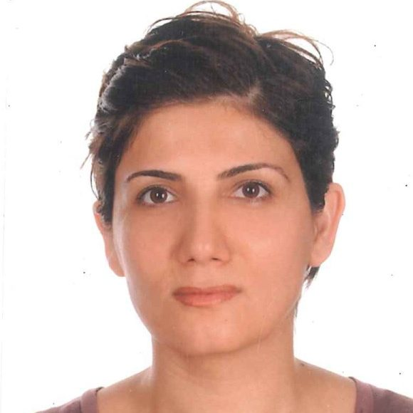 Songul Aslan profile picture